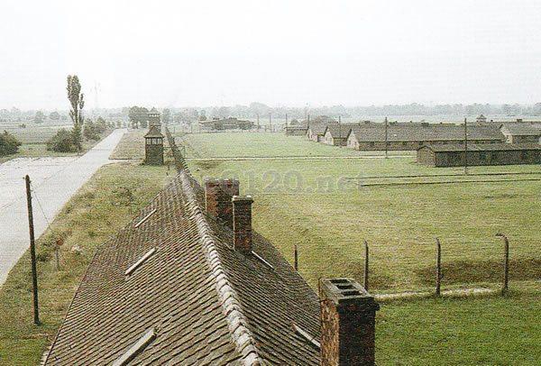 アウシュヴィッツ強制収容所の画像 p1_7