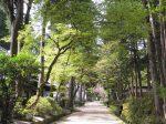 絲原記念館-奥出雲町-仁多郡-島根県