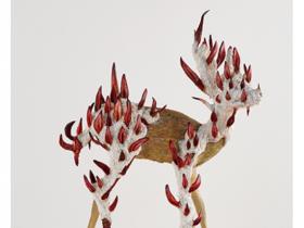 「宮川慶子展ー生命は自分自身だけでは完結できないようになっているらしい」平塚市美術館
