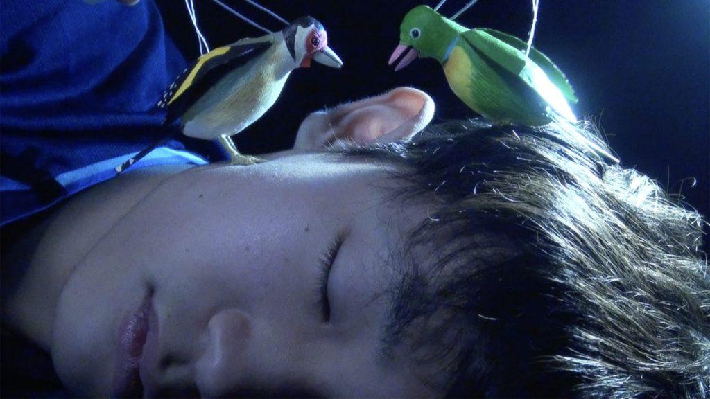 高田冬彦《The Princess and the Magic Birds》映像、音声、17分52秒、2020–21