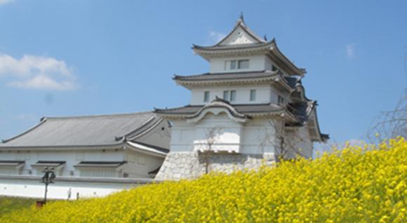 千葉県立関宿城博物館-野田市-千葉県