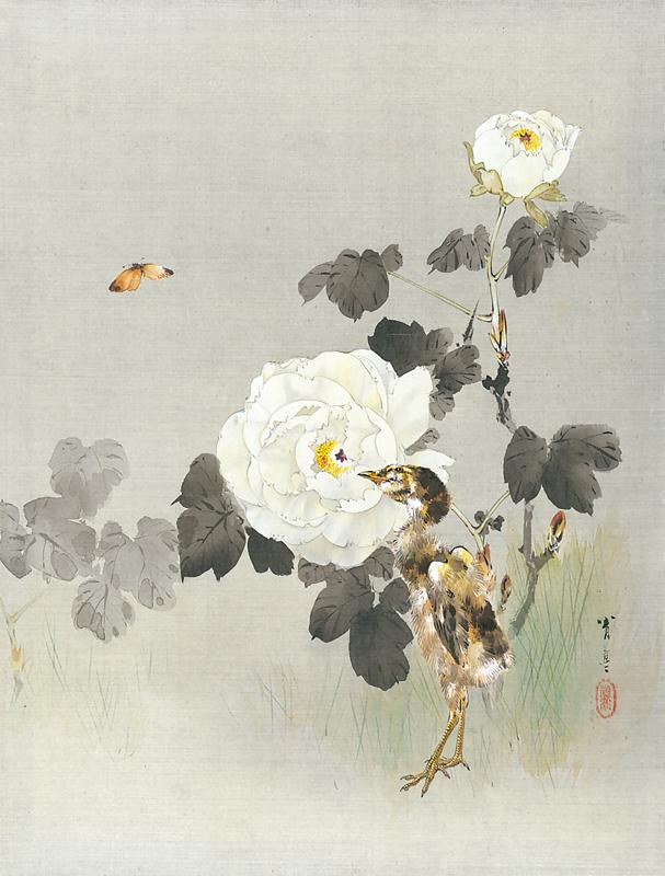 《花鳥魚鰕画冊 牡丹に雛図》 メトロポリタン美術館蔵