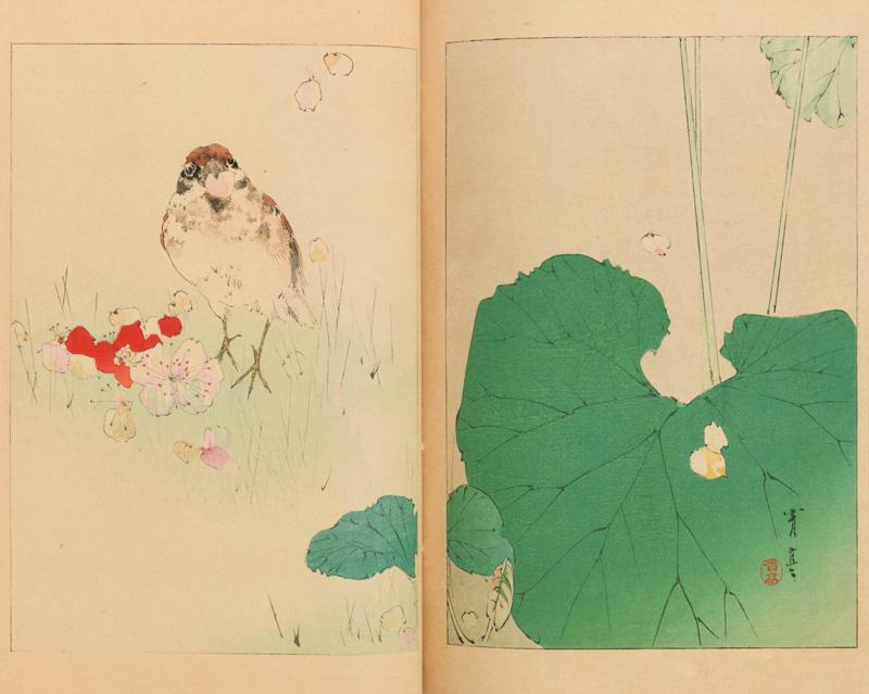 『美術世界』二十五巻より《雀啣落花》 春陽堂刊 明治27年(1894) 個人蔵