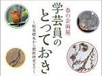 「学芸員のとっておき ~秘蔵標本から最新研究まで~」島根県立三瓶自然館サヒメル