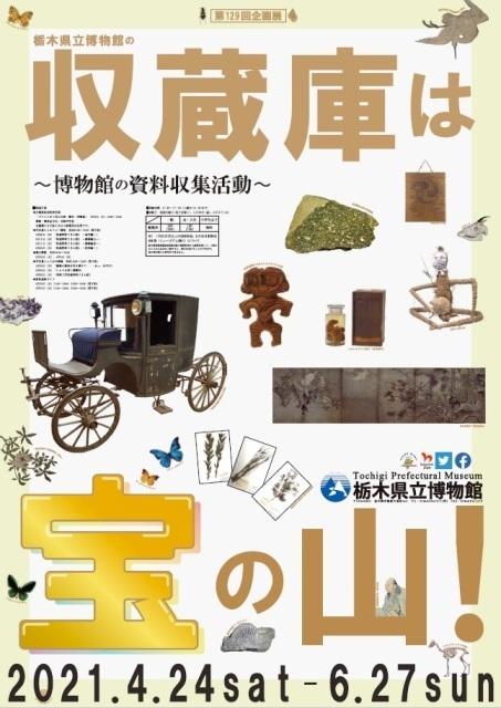 「収蔵庫は宝の山!~博物館の資料収集活動~」栃木県立博物館