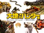 「大地のハンター展 ―陸の上にも4億年―」新潟県立万代島美術館
