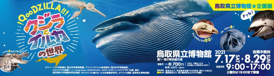 「QooDZILLA!! クジラとイルカの世界」鳥取県立博物館