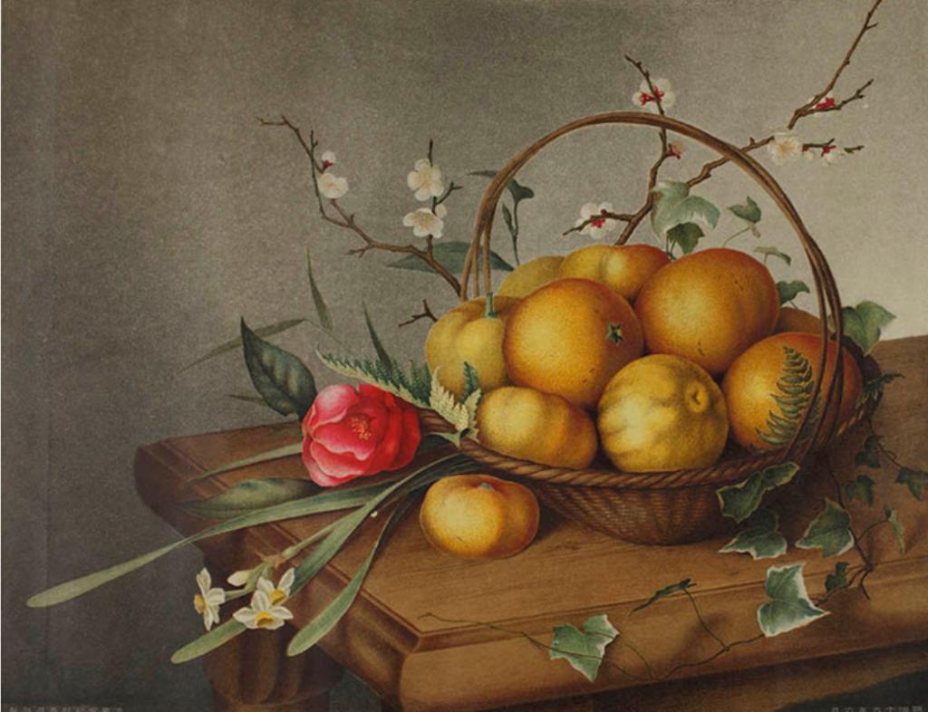 大蔵省印刷局 《[卓上静物]》 1833年 平版・石版(多色刷)