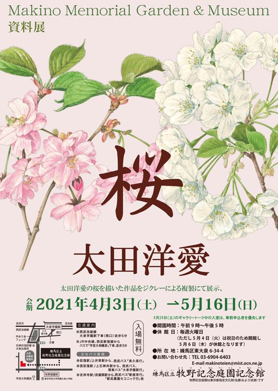 資料展「桜 太田洋愛」牧野記念庭園記念館