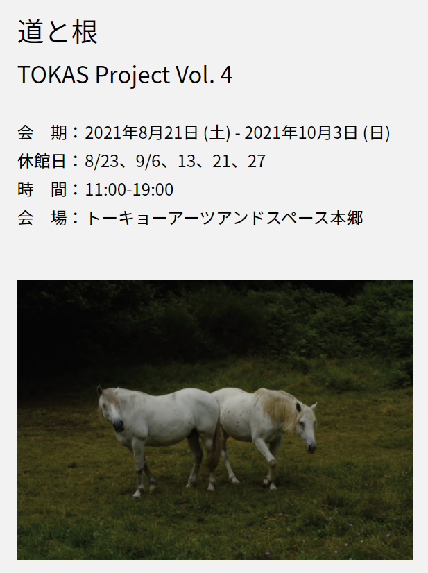 TOKAS Project Vol. 4「道と根 Routes/Roots」トーキョーアーツアンドスペース本郷
