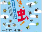 企画展「だいすき、虫!‐身近な昆虫たちの世界」美濃加茂市民ミュージアム