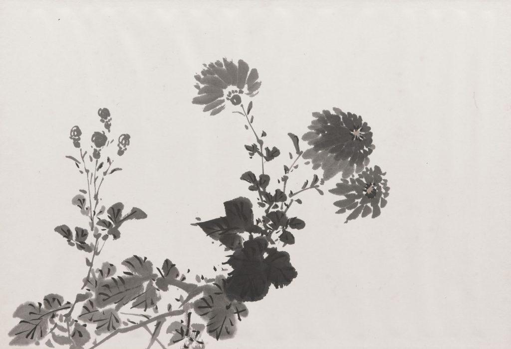 金井烏洲《四君子帖》(菊図部分) 群馬県立歴史博物館蔵 前期展示