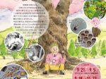 笹部さくら資料室「今日から君も桜博士」白鹿記念酒造博物館(酒ミュージアム)