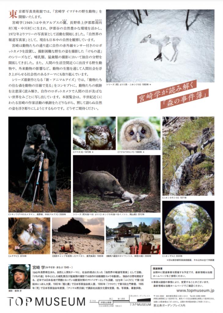 「宮崎学 イマドキの野生動物」東京都写真美術館