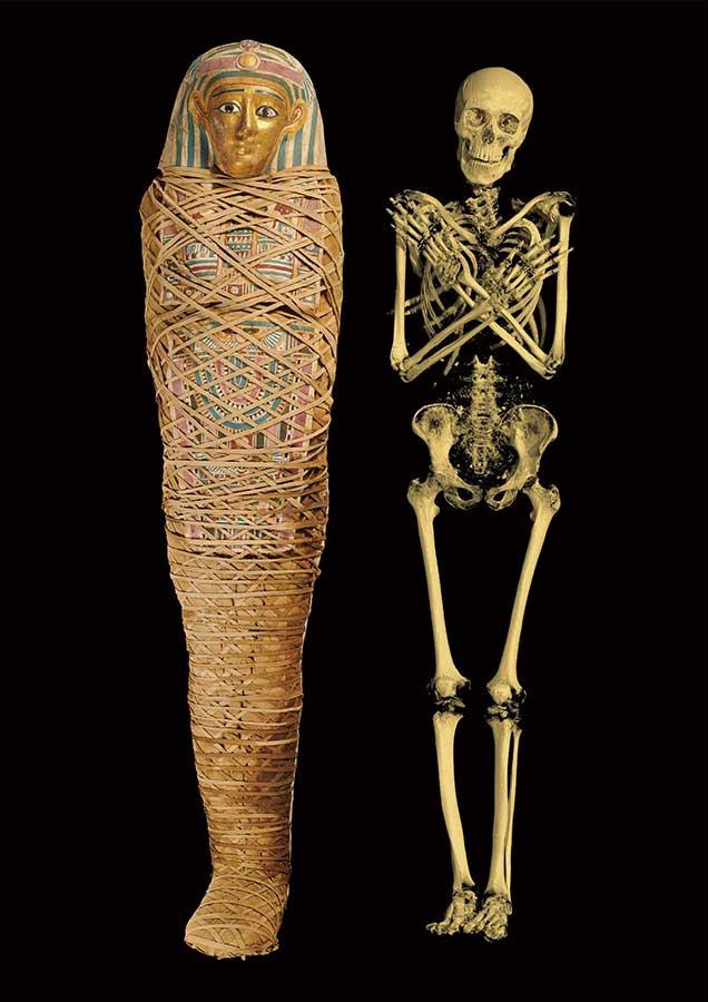 若い男性のミイラと、CTスキャン画像から作成した3次元構築画像 プトレマイオス朝時代後期~ローマ支配時代初期、前100~後100年頃、大英博物館蔵、 © The Trustees of the British Museum