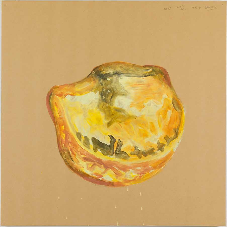 日比野克彦《No.63 Kanazawa》(『明後日の種』より)2007年 金沢21世紀美術館(撮影:木奥惠三)