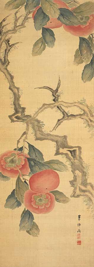 高橋草坪筆 「台柿図」 文政12年(1829) 【前期展示