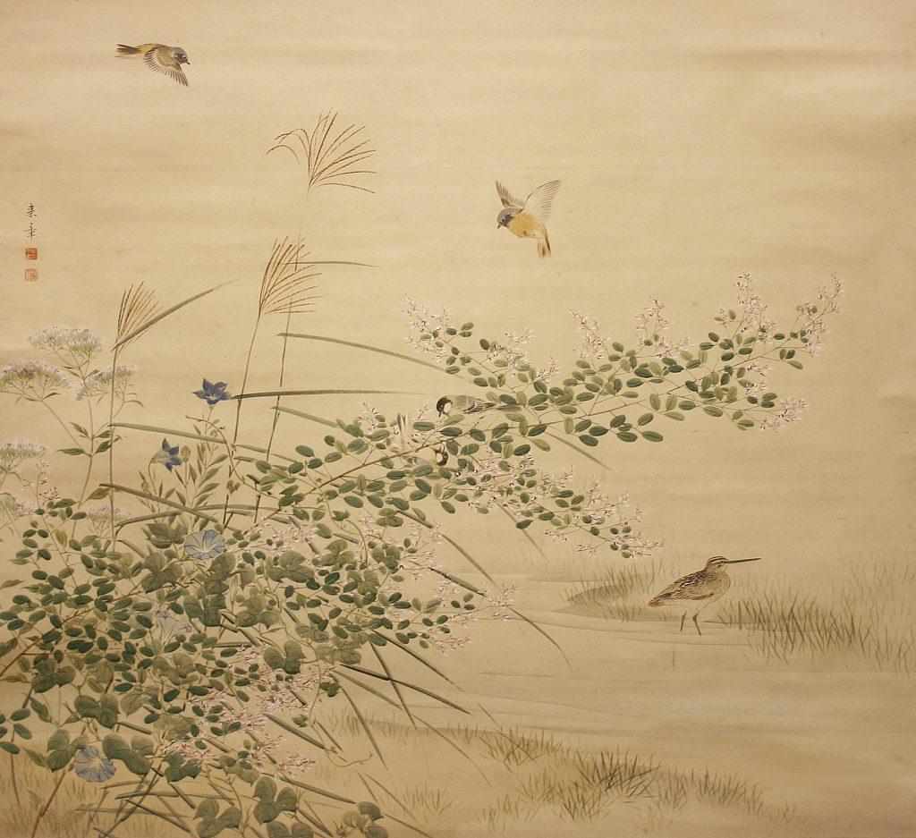 中島 来章 筆  秋艸小鳥の図 なかじま らいしょう   あきくさにことり ず   江戸時代(19世紀) 紙本着色・1幅   119×128㎝  中島来章(1796~1871)は、近江国(滋賀県)大津に生まれ、幼少より絵の修行のため京都に移り住み、初め円山応挙門の渡辺南岳に師事し、後に円山応瑞に学ぶ。花鳥、山水、人物画を能くして幕末の円山派を代表する画家となり、その門下からは幸野楳嶺や川端玉章等が出た。  本作には、萩(はぎ)、薄(すすき)、桔梗(ききょう)、藤袴(ふじばかま)、朝顔などの秋草と、その上を飛ぶジョウビタキ、萩の枝に遊ぶシジュウカラ、水辺にたたずむ鴫(しぎ)が描かれる。大作にもかかわらず、柔らかですっきりとした画面からは、ひんやりとした秋の空気が感じられる。