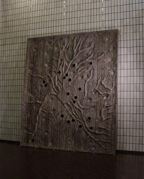 水根Ⅱ(スワ),2005
