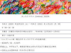「魔法の手 ロッカクアヤコ作品展」千葉県立美術館