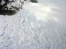 「DOUG AITKEN - NEW OCEAN: THAW」エスパス ルイ・ヴィトン 東京