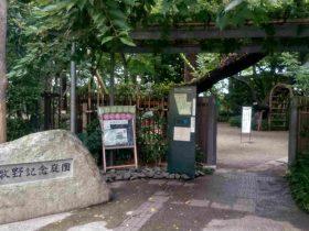 牧野記念庭園記念館-練馬区-東京都