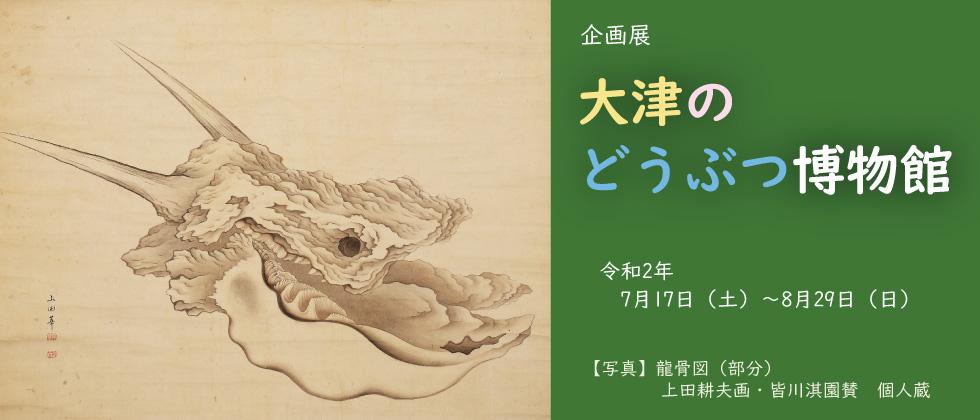 第84回企画展「大津のどうぶつ博物館」大津市歴史博物館