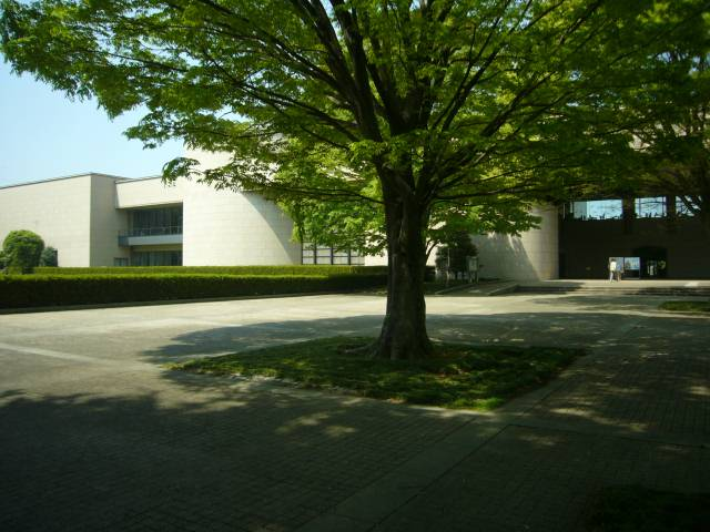 栃木県立博物館-宇都宮市-栃木県