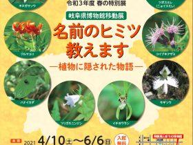 移動展「名前のヒミツ教えます ―植物に隠された物語―」岐阜県博物館