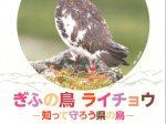 博物館・岐阜大学連携企画展「ぎふの鳥 ライチョウ ―知って守ろう県の鳥―」岐阜県博物館