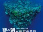 特別企画展「安藤徹写真展 藍の刻」―写真で巡る海中遺跡と豊かな自然―」三宅美術館