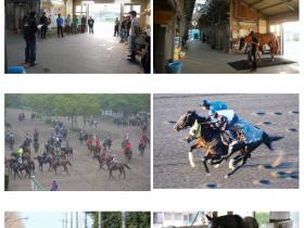 企画展「馬にかかわるいろいろなおしごと~競走馬を支える厩舎スタッフ~」JRA競馬博物館