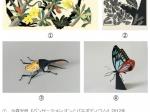 企画展「今森光彦 自然と暮らす切り紙の世界」パラミタミュージアム