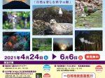 第41回「SSP展~自然を楽しむ科学の眼~」宮崎県総合博物館