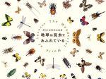 第35回特別企画展「地球は昆虫であふれている」豊橋市自然史博物館