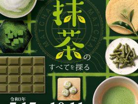 企画展「世界も注目する 抹茶のすべてを探る」ふじのくに茶の都ミュージアム