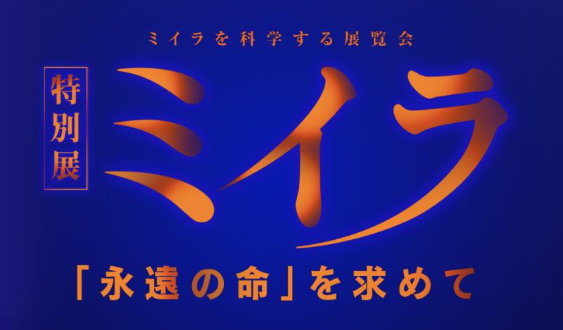 特別展「ミイラ「永遠の命」を求めて」大阪南港ATCホール
