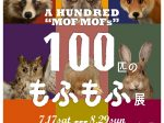 企画展「100匹のもふもふ展~石川の動物と剥製標本~」小松市立博物館