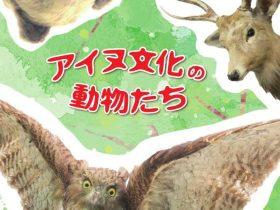 「アイヌ文化の動物たち」旭川市博物館