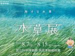 「水草展~旅する水草」 国立科学博物館