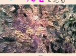 第Ⅰ期常設展「絵肌を見る」 高松市塩江美術館