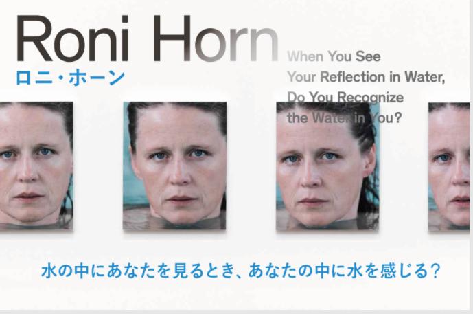 「「ロニ・ホーン」展 水の中にあなたを見るとき、あなたの中に水を感じる?」ポーラ美術館