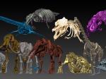 「3D骨格でよみがえる日本の古生物展」平山郁夫シルクロード美術館