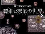 「MICROCOSMOS 螺鈿と象嵌の世界」高麗美術館