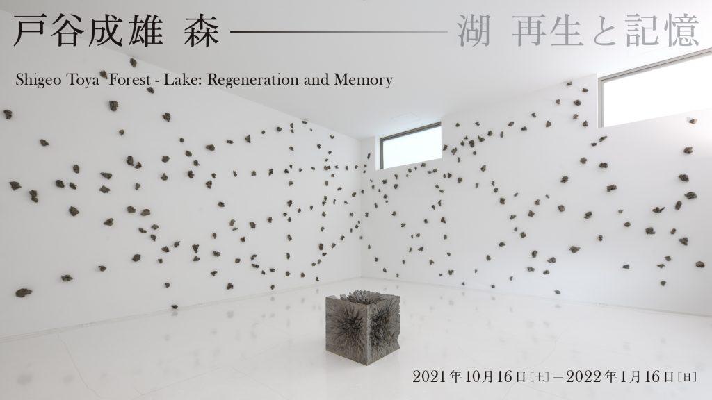 「戸谷成雄 森―湖:再生と記憶」市原湖畔美術館