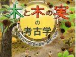 「木と木の実の考古学~縄文時代の低湿地遺跡と植物の利用~」栃木県立博物館