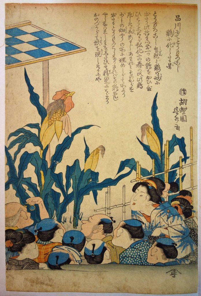 参考図:胡蝶園春升「品川にてとうもろこし鶏に化したる図」個人蔵 ※本展には出品されません